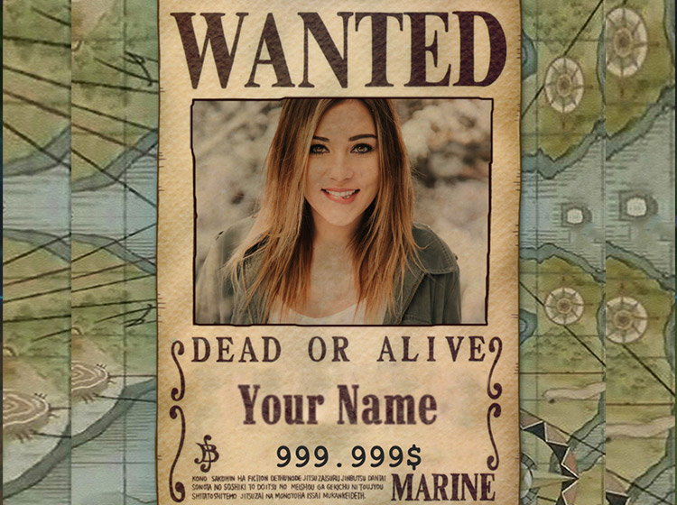 Make One Piece wanted poster online